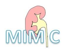MIMIC Logo